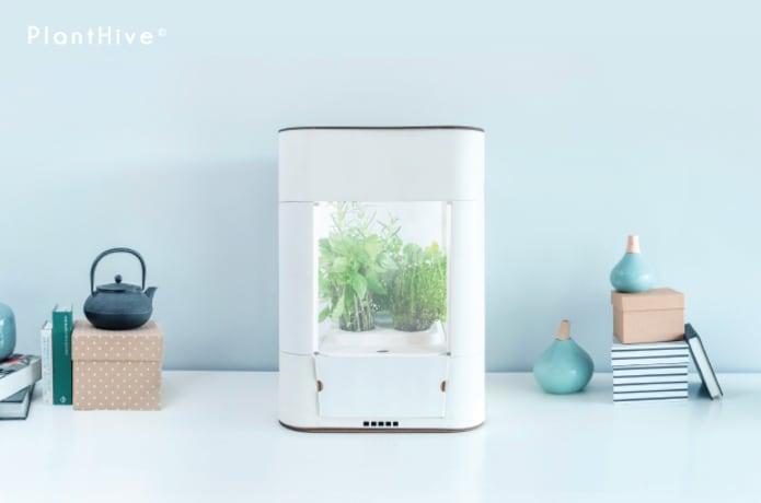 PlantHive: The Elegant Smart Garden   Indiegogo