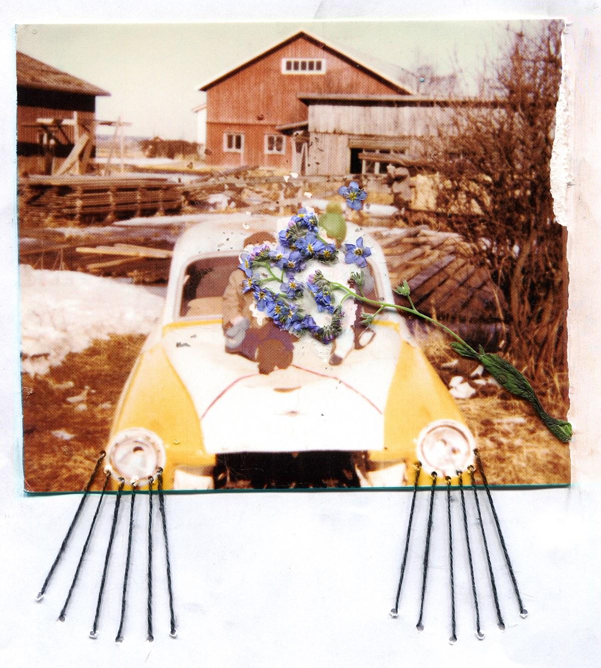 randevú daisy folge 15